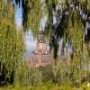 Marienkirche hinter Grün